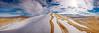 3) Kelso Dunes 200812211338