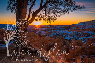 wlc so  Utah trip Jan 1892018-2-Edit