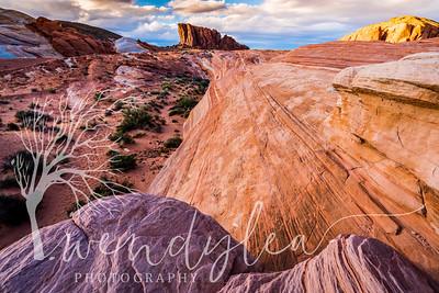 wlc Southern Utah 0217February 22, 2017-75-Edit