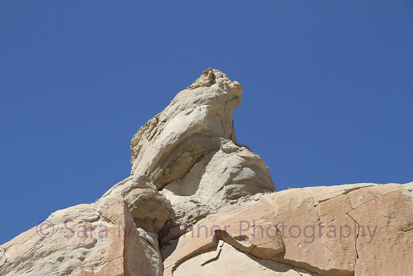 Frog Rock closer