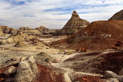 Bisti Geology