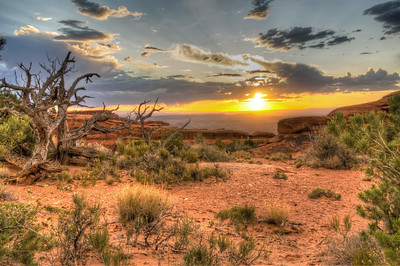http://www.imagesbyblair.com/Landscapes/DesertSouthwest-2/Utah/Arches-National-Park/i-v4Kqgrg/5/S/desert%20sunrise%202-S.jpg