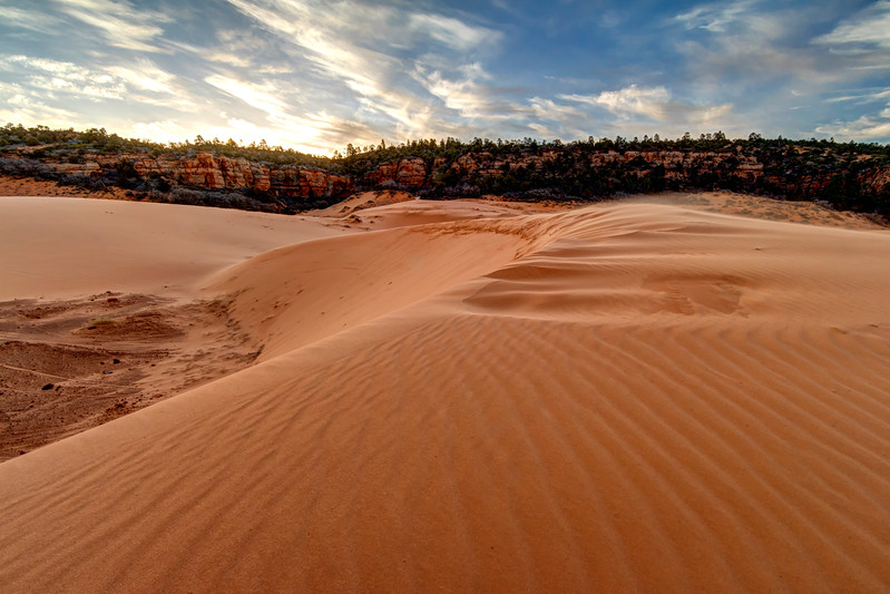 Coral Pink Sand Dunes 03