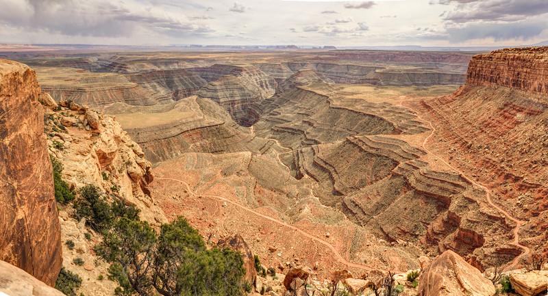 Muley Point Panorama