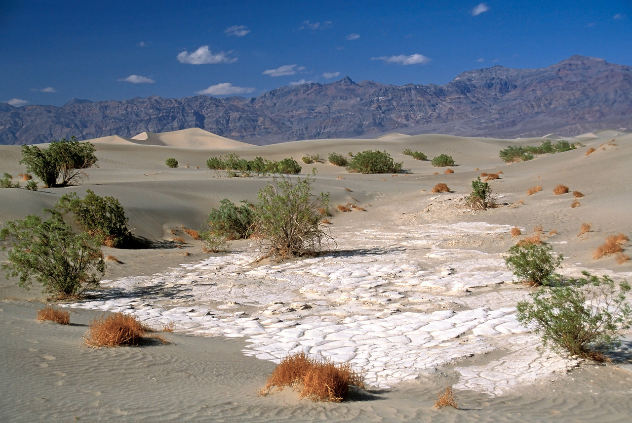 Sand dunes and dried mud, Death Valley California
