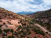 Mountain Vista from the Desert