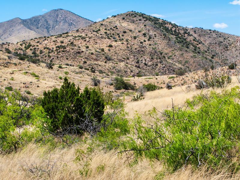 New Mexico Desert Hills 5