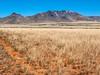 New Mexico Desert Hills 6