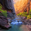 Reflecting Canyon Light,<br /> Zion National Park, UT