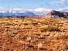 Seligman Arizona