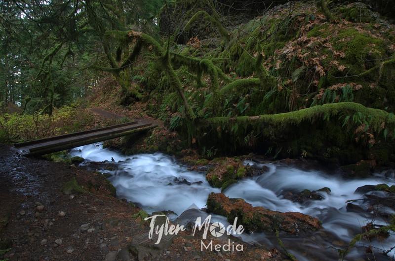 155  G Wahkeena Creek and Bridge
