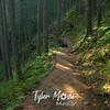 65  G Sunny Trail Down