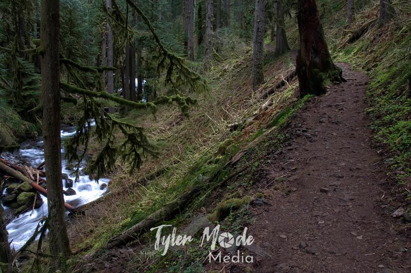 64  G Multnomah Creek and Trail