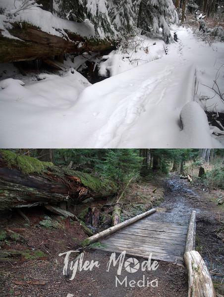 Z3  Bridge Compare