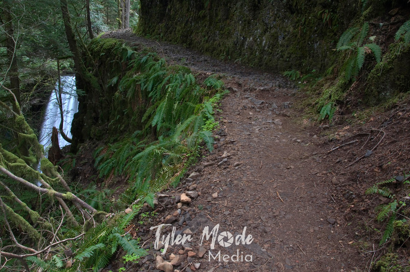 60  G Ecola Falls and Trail