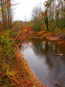 """One last shot of the stream, again with the OM-D's """"pop art"""" filter to enhance the last brilliant colors of fall.  Difficult Run Fairfax County, VA October 2012"""