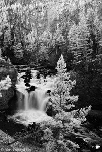 Firehole Falls - Yellowstone - IR