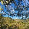 Alston Park Oak Composite