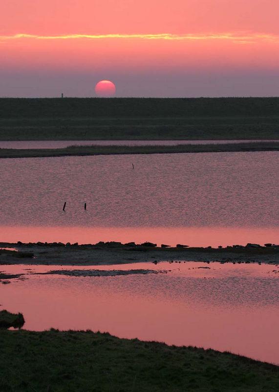 """Sunset over the """"Flauwerse Inlagen"""" (Zierikzee, NL)"""