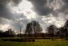 "Dramatic light in the ""Zwarte Beek"""