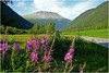 Utsikt mot Gaustatoppen i Telemark<br /> <br /> View to Mt.Gausta in Telemark,Norway