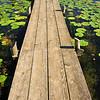 Longville Dock - 02