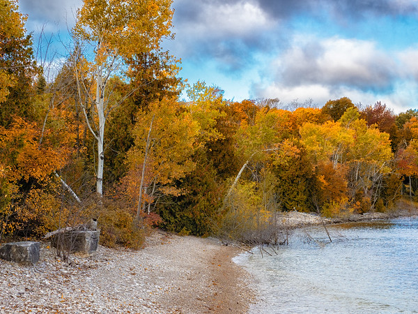 Fall In The Shoreline