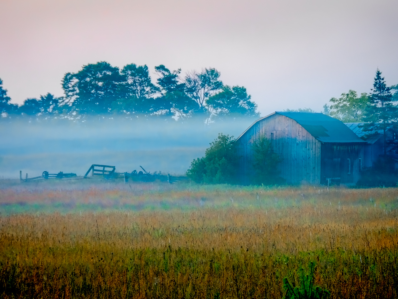 Misty Morning On The Farm