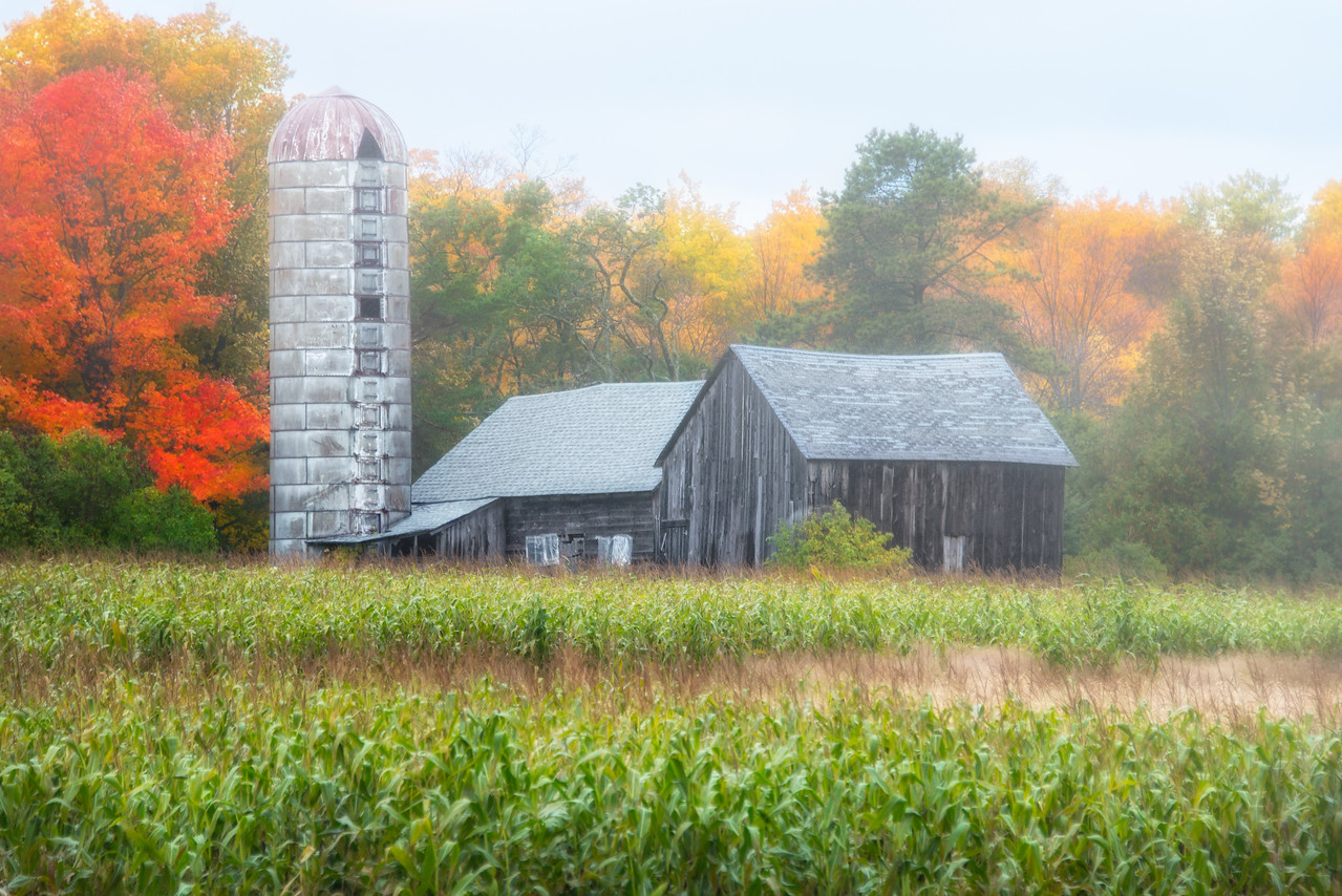 Fall On The Farm-Edit-Edit