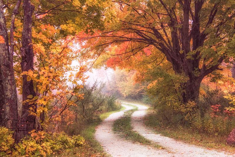 Mystery Lane