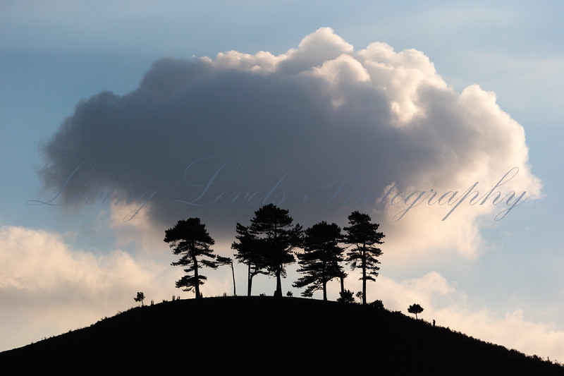 A cloud appears to perch over Colmer's Hill in late Autumn, casting shadows all around.