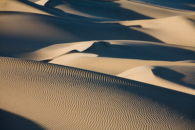 Rippled Dunes 8456