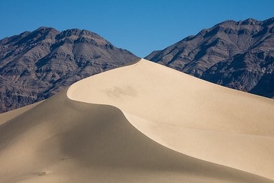 Flowing Dune 8242