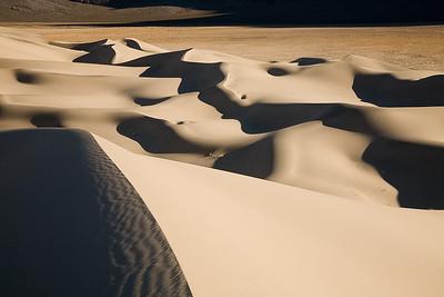 Rolling Dunes 8335