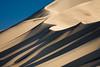 Dune Ridges 8493