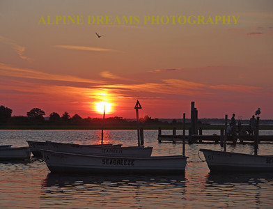 BARNEGAT-SUNSET-1