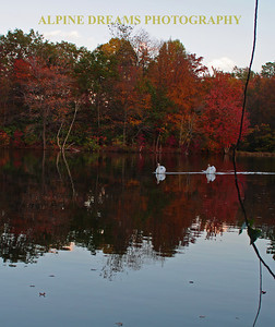 FALL-REFLECTIONS-1