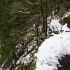 41  Eagle Creek Trail