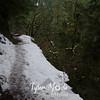 31  G Trail Snow