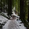 28  G Trail Snow V