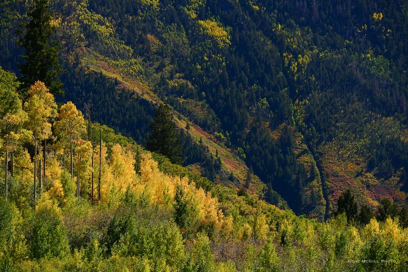 Early Autumn, Curecanti National Recreation Area