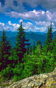 View from the summit of Mount Seymour