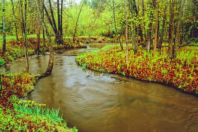 Viviry creek in early spring