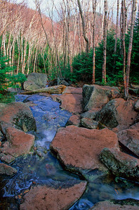 Stream on Mount Algonquin