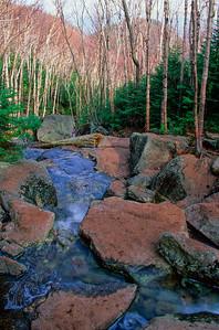 Stream on Mount Algonquin