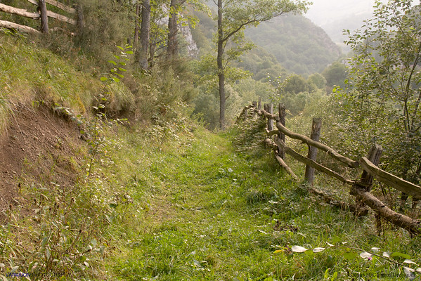 Path across the mountains. Asturias. Spain.