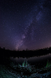"""Drunken Sky"" Everglades National Park, Florida"