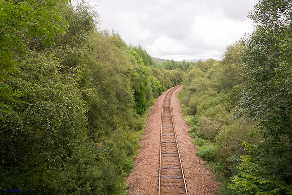 Railway to the Forest. Scotland.