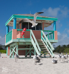Peach Lifeguard Station on south beach, Miami
