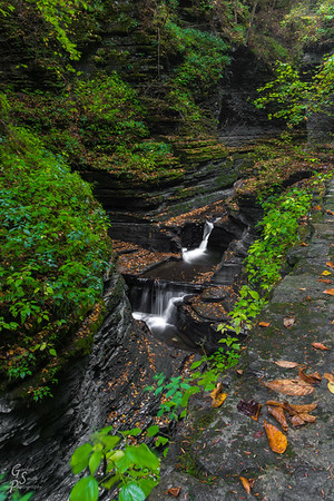 Watkins Glen Trail Scenery